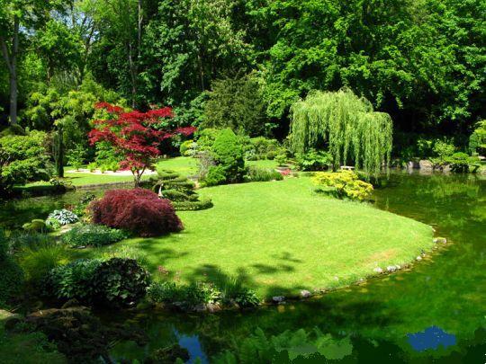 jardin-japonais-540x405